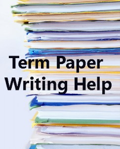 Term papers writing service - SunSmart Guide